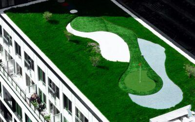 Groene daken; 7 voordelen voor u en uw omgeving